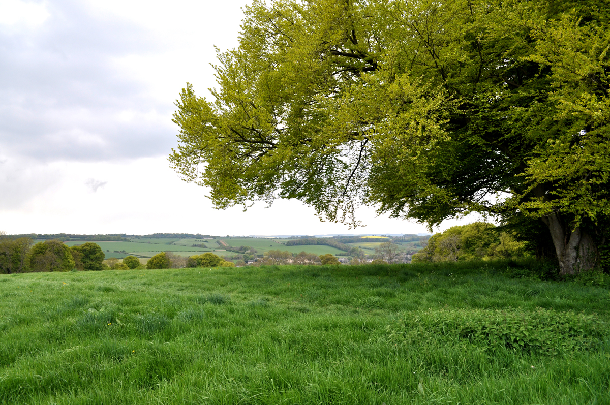 Field overlooking Donnington, Cotswolds, Gloucstershire, England, UK