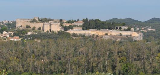 Fort St. Andre, Villeneuve d'Avignon, France, seen from Papal Palace, Avignon. Photo by David Wineberg